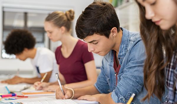 voorgezet-onderwijs-home-professionals